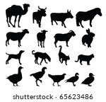 farm animal silhouettes | Shutterstock . vector #65623486