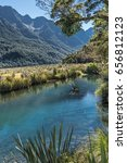 Fiordland National Park  New...