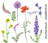 Hand Drawn Floral Set....