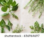 fresh kitchen herbs | Shutterstock . vector #656964697