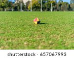 Small photo of MELBOURNE, VICTORIA/AUSTRALIA MAY 20: An AFL football sits on the grass with goal posts in the distance at JJ holland Park in Melbourne, Australia on May 20, 2017.