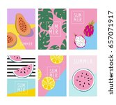 cool summer print with exotic... | Shutterstock .eps vector #657071917