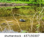 old tire polluting water in... | Shutterstock . vector #657150307
