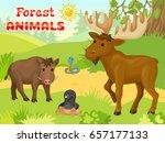 animals on forest. horizontal... | Shutterstock .eps vector #657177133