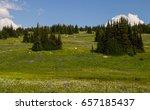alpine meadow in british... | Shutterstock . vector #657185437
