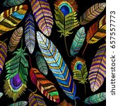 color feathers embroidery... | Shutterstock .eps vector #657557773