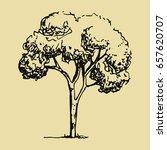hand drawing tree | Shutterstock .eps vector #657620707