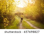 little boy in summer sunny day... | Shutterstock . vector #657698827