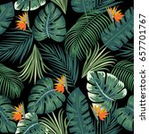 tropical leaves and flowers of... | Shutterstock .eps vector #657701767