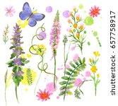 raster vivid summer picture... | Shutterstock . vector #657758917