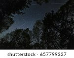 Meteors In The Night Sky In Th...