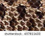 Small photo of Dragon Scales A snakes skin up close