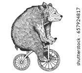 circus bear on bicycle raster... | Shutterstock . vector #657924817