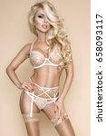 elegant female model in  sexy ... | Shutterstock . vector #658093117