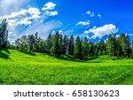 summer green nature forest hill ... | Shutterstock . vector #658130623