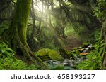 tropical jungle with river | Shutterstock . vector #658193227
