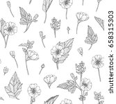 vector hand drawn floral... | Shutterstock .eps vector #658315303