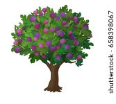 realistic fig tree. cartoon... | Shutterstock .eps vector #658398067