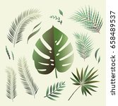 set of various tropical leaves. ... | Shutterstock .eps vector #658489537