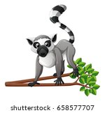 cute lemur on the branch... | Shutterstock .eps vector #658577707