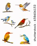 bird set watercolor original... | Shutterstock . vector #658606153