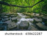 view of trees and water in... | Shutterstock . vector #658622287