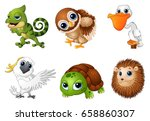 vector illustration of wild... | Shutterstock .eps vector #658860307