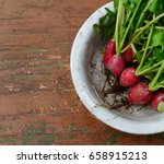 red radish with green leaves in ... | Shutterstock . vector #658915213