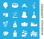 spa icons set. set of 16 spa... | Shutterstock .eps vector #658958503
