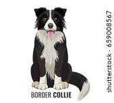 border collie pet isolated on... | Shutterstock .eps vector #659008567