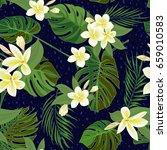 seamless hand drawn tropical... | Shutterstock .eps vector #659010583