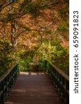 tokyo   november 22  fall...   Shutterstock . vector #659091823