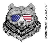 grizzly bear big wild bear hand ... | Shutterstock . vector #659165047