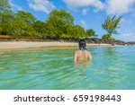 female tourist in tropical... | Shutterstock . vector #659198443