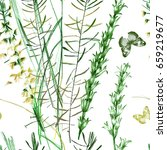 wilds grass pencils graphic on... | Shutterstock . vector #659219677