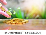pile gold coins growth up to...   Shutterstock . vector #659331007