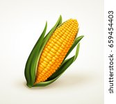 fresh delicious corn  can be... | Shutterstock .eps vector #659454403