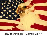 American Flag With Eagle. ...