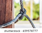 male hands tie a rope tree rope ... | Shutterstock . vector #659578777
