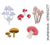 mushrooms setmushrooms vector