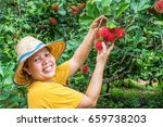 Fruit Farmers Are Collecting...