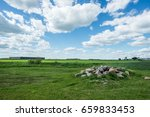 green glass land with rocks on... | Shutterstock . vector #659833453