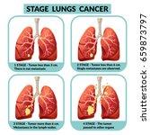 cartoon internal human organ...   Shutterstock .eps vector #659873797