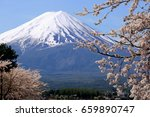 mount fuji with cherry blossom... | Shutterstock . vector #659890747