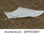 kite falling on the ground | Shutterstock . vector #659931847