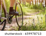 young bicyclist riding in the... | Shutterstock . vector #659978713