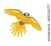 ara parrot . birds of amazonian ... | Shutterstock . vector #660216277