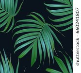 vector tropical palm leaves...   Shutterstock .eps vector #660241807
