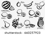 fruit collection. doodle vector ... | Shutterstock .eps vector #660257923