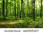 forest green | Shutterstock . vector #660505207